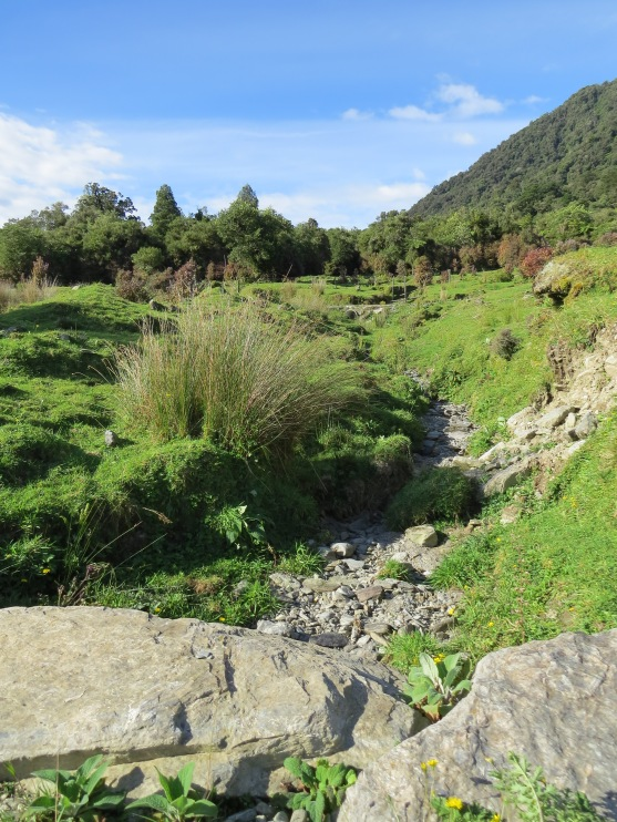 Dry creek by the cycleway